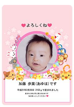 katouayuha_okome_s.jpg