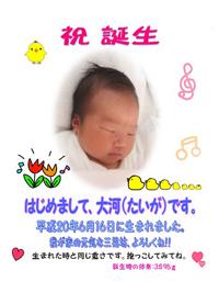 taiga_okome_s.jpg