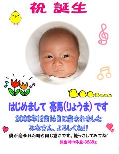 tiyozawaryouma_okome_s.jpg